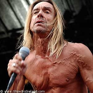 iggy pop new album